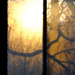 Golden Dawn in the Window Condensation by alophoto