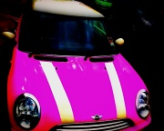 25th Sep 2010 - Pink Mini
