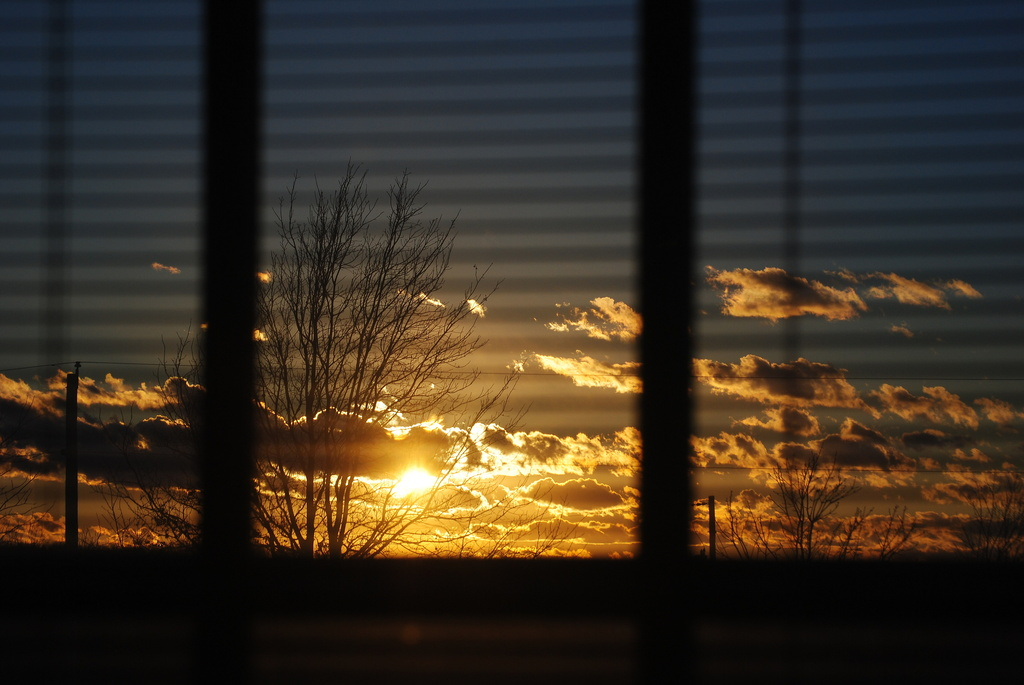 Sunset Through the Blinds by genealogygenie