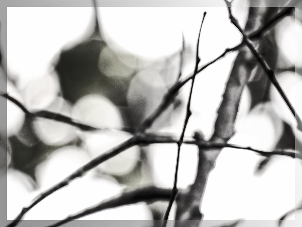 twiggy by kali66