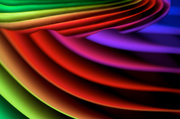 24th Feb 2014 - Curves in Color/Colour