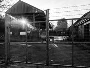 25th Feb 2014 - railway siding - 25-02