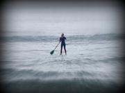 25th Feb 2014 - Paddle boarder