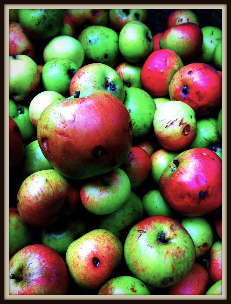 Apples  by rich57