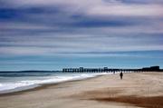 27th Feb 2014 - A Day at the Beach