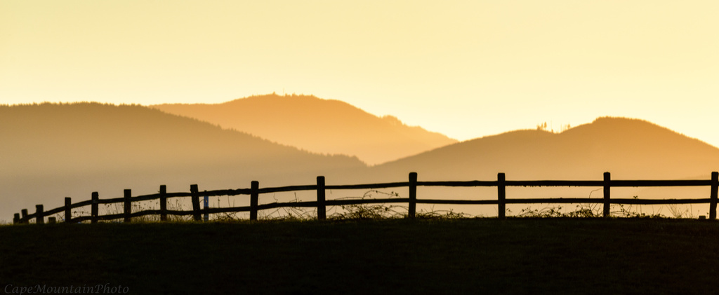 Fence In Golden Light  by jgpittenger