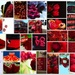 My red month by bizziebeeme