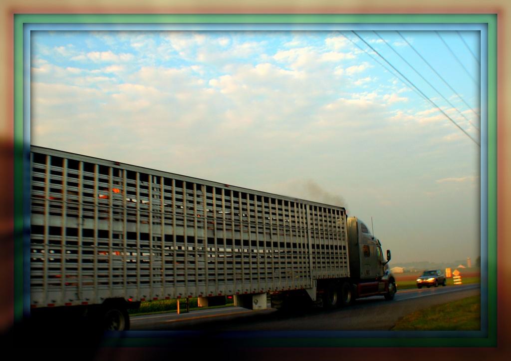 On The Road Again by digitalrn