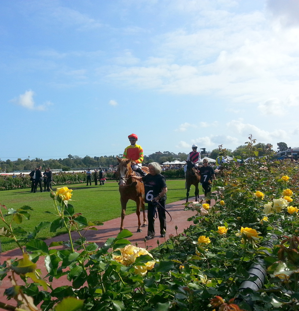 """Beautiful """"Barbie"""" in the Mounting Yard by princessm"""