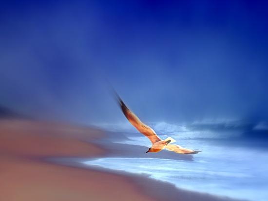Perfect landing by joemuli