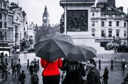 3rd Mar 2014 - Day 062, Year 2 - Lady In Red, In Trafalgar