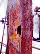 3rd Mar 2014 - Steel Rusts