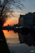 6th Mar 2014 - Dairy Factory Sunset