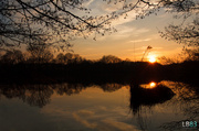 8th Mar 2014 - Spring Sunset