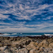 California's 17 Mile Drive by taffy