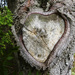 Broken Heart by onewing