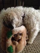 11th Mar 2014 - Nella has a Brand New Toy