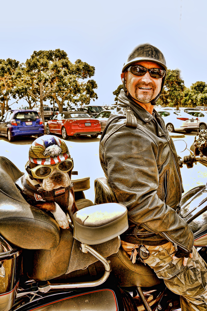 Chopper The Biker Dog and his Dad  by joysfocus