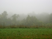 28th Sep 2010 - Somewhere Out There is Mt. Wachusett...