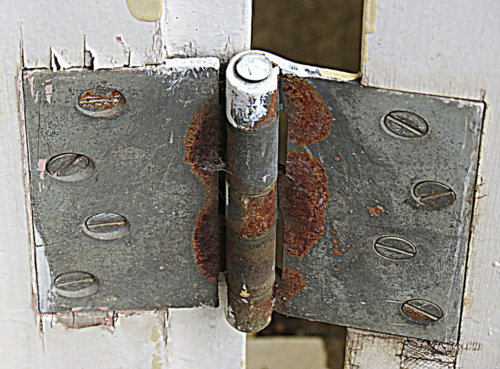 Old door hinge by kiwiflora