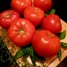 Tomatoes, Basil and Thyme by peggysirk