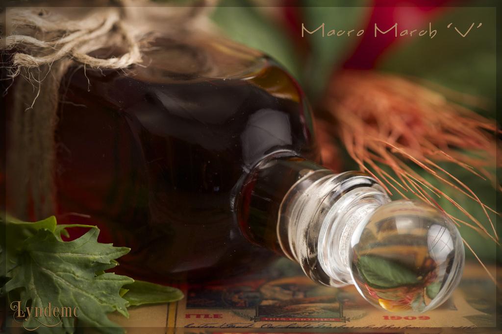 Vinegar & Vegetables by lyndemc