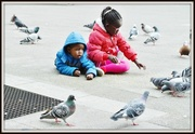 22nd Mar 2014 - Pigeon Square