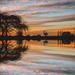 Local Reflection by tonygig