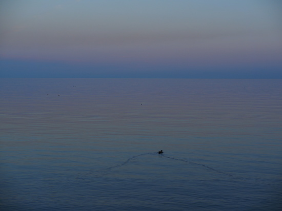 Evening by selkie