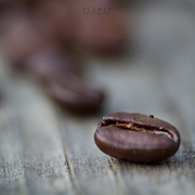 1st Apr 2014 - Magic beans