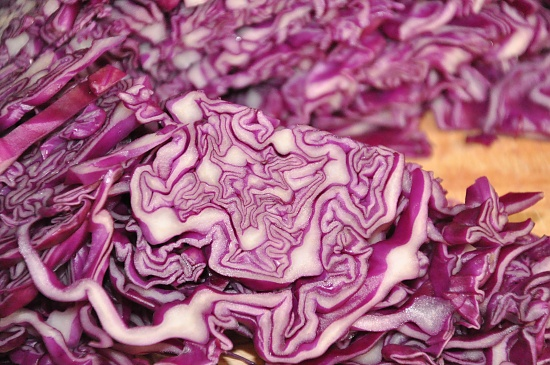 Red Cabbage by overalvandaan