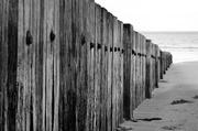 4th Apr 2014 - sleeper wall