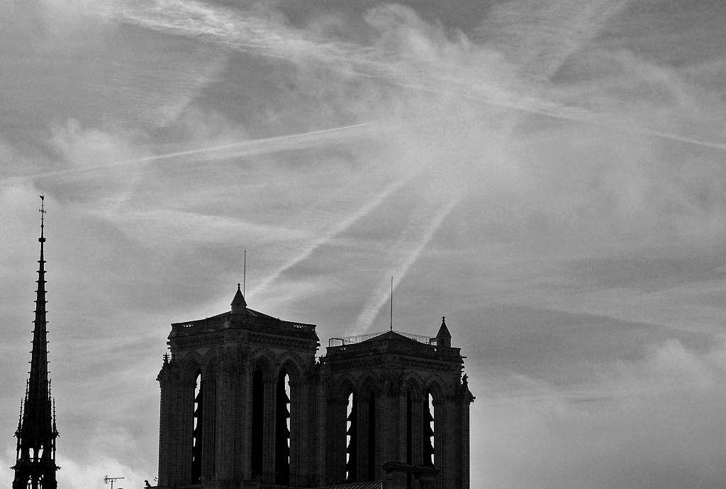 Notre Dame de Paris by parisouailleurs