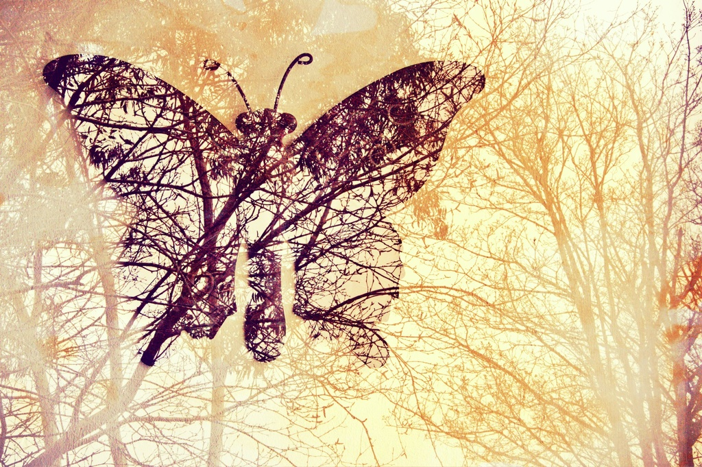 Roots to grow, wings to fly... by overalvandaan