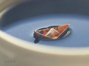 3rd Apr 2014 - Float'n in it