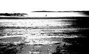 5th Apr 2014 - Low tide
