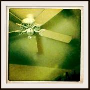 2nd Oct 2010 - Ceiling Fan