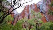 6th Apr 2014 - Waterfalls regenerating Uluru