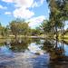 Desert in flood by flyrobin
