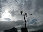 8th Apr 2014 - P1000993