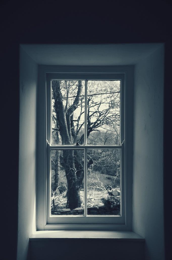 Through the window by overalvandaan