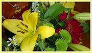15th Apr 2014 - love a bouquet
