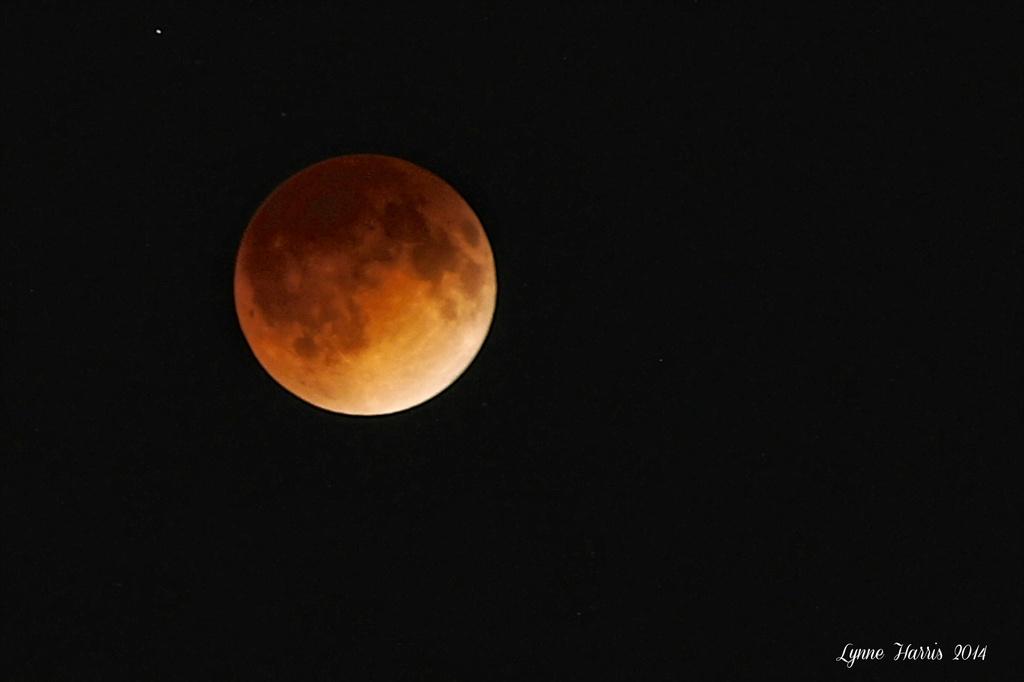 Blood Moon by lynne5477