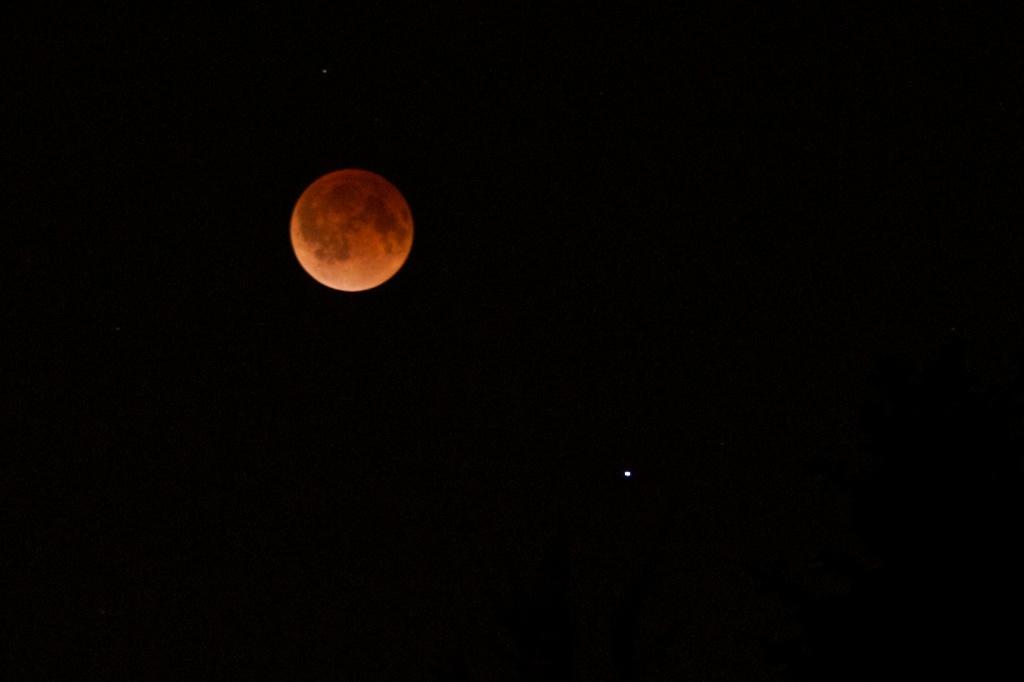 Blood Moon Lunar Eclipse by jyokota