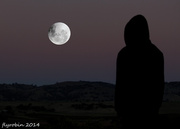 15th Apr 2014 - Watching the moon rise