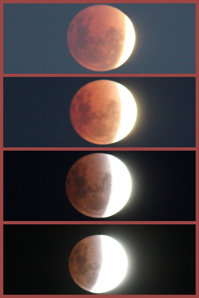 Eclipse from Warrnambool by gilbertwood