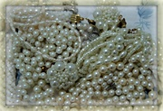 16th Apr 2014 - the lustre of pearls