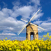 Chesterton Windmill ~ 2 by seanoneill