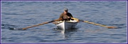 19th Apr 2014 - Early morning row.