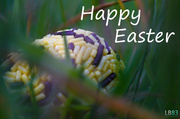 20th Apr 2014 - Happy Easter